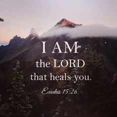 """""""And said, If thou wilt diligently hearken to the voice of the LORD thy God, and wilt do that which is right in his sight, and wilt give ear to his commandments, and keep all his statutes, I will put none of these diseases upon thee, which I have brought upon the Egyptians: for I am the LORD that healeth thee."""" Exodus 15:26"""