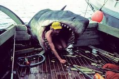 We're gonna need a bigger boat. I read on TIME that that quote isn't quite right. But, works for me. JAWS