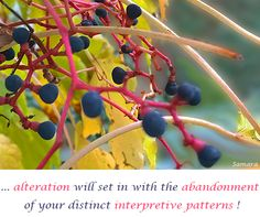 ... #alteration will set in with the #abandonment of your distinct #interpretive_patterns !