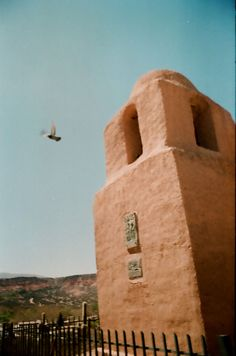 Pigeon on Film in Humahuaca, Argentina Visual Diary, Pigeon, Mount Rushmore, Mountains, Film, Nature, Travel, Argentina, Movie