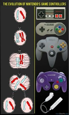 Evolution of Nintendo's controllers ;)