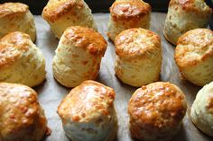 While making Gregoire's four batches of sweet light scones I made these savoury morsels. Use strongly flavoured cheese, I used vintage cheddar. I have written an extensive post on scones in the sweet version here, explaining how you should rest the dough before stamping the scones out. These are delicious [click to continue...]