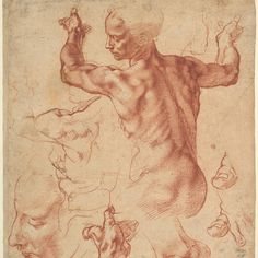 """Excited for this new exhibition @metmuseum) """"Michelangelo Buonarrotis frescoes for the ceiling of the Sistine Chapel were unveiled on this day in 1512. This sheet which will be on view in Michelangelo: Divine Draftsman and Designer opening November 13 includes studies for the figure of the Libyan Sibyl. Michelangelo Buonarroti (Italian 14751564). Studies for the Libyan Sibyl (recto); Studies for the Libyan Sibyl and a small Sketch for a Seated Figure (verso) ca. 151011. #TheMet…"""