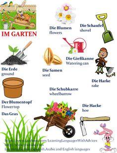 Deutsch                                                       …                                                                                                                                                                                 Más