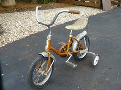Schwinn Little Tiger 2