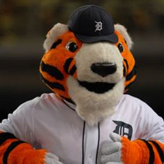 PAWS - The Official Mascot of the Detroit Tigers | tigers.com: Fan Forum