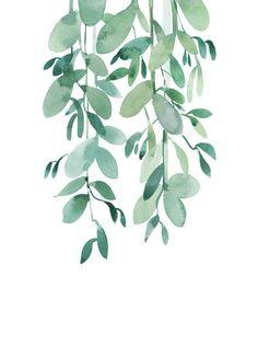 tropical-wall-art-leaf-eucalyptus-jpg - paint and art Watercolor Plants, Watercolor Leaves, Watercolor Art, Plant Painting, Plant Art, Spray Painting, Body Painting, Feuille Eucalyptus, Art Carte