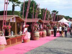 Dal 31.05 al 02.06 #Melegatti a Bardolino (VR) per il Palio del Chiaretto!