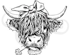 Hairy Cow with Red Bandanna Sublimation Transfer, Highland Cow, Shaggy Cow, Sublimation Transfer, Hairy Cow Ready to Press Transfer Cow Drawing, Cow Shirt, Highland Cow Tattoo, Up Girl, Pyrography, Silhouette Cameo, Screen Printing, Cricut, Sketches