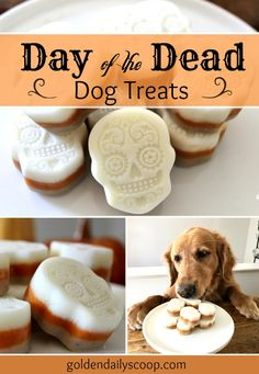 Healthy Dog Treats Day of the Dead Dog Treats - Day of the Dead dog treat recipe with three layers of flavors. A perfect Halloween treat for your dog! Puppy Treats, Diy Dog Treats, Homemade Dog Treats, Dog Treat Recipes, Healthy Dog Treats, Dog Food Recipes, Healthy Snacks, Puppy Obedience Training, Dog Training Tips
