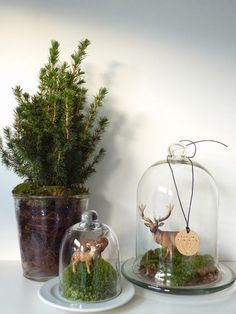 Christmas Abbott, Diy Christmas Tree, Xmas Tree, Christmas 2019, Winter Christmas, Christmas Centerpieces, Xmas Decorations, The Bell Jar, Christmas Gifts For Boyfriend