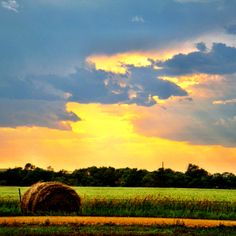 Hay bale after a storm in North Dakota