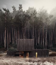 Describe this home in ONE word! The Black Timber House is designed by Studio Puisto Architects + Bas van Bolderen Architectuur and is located in // Visuals by Maria Glyzdakova A As Architecture, Architecture Visualization, Architecture Definition, Japanese Architecture, Futuristic Architecture, Contemporary Architecture, Timber House, Wooden House, Organic Modern