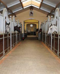 Hof Kasselmann | Hof Kasselmann | Equestrian Facilities
