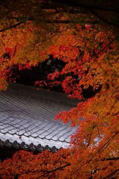 kyoto keage  南禅寺 2014