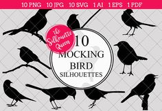 Mocking Bird Silhouette Vector Graph by The Silhouette Queen Silhouette Clip Art, Black Silhouette, Silhouette Studio, Vector Design, Logo Design, Design Art, Graphic Design, Design Elements, Mocking Birds