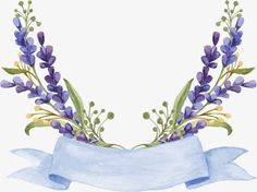 lavender, Flowers, Watercolor PNG Image and Clipart Flower Background Wallpaper, Flower Backgrounds, Floral Logo, Motif Floral, Watercolor Cards, Watercolor Flowers, Flower Frame, Flower Art, Borders And Frames