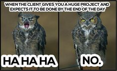When the client gives you a huge project and expects it to be done by the end of the day. HAHAHA NO.  #meme #workmeme #marketing #humor #funny #deadline #client #workoverload