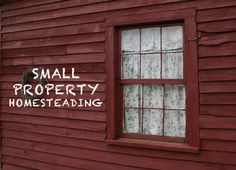 small property homesteading / http://homegrownandhealthy.com/small-property-homesteading/