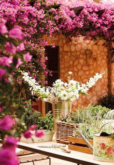 ✿ Mallorca, Spain