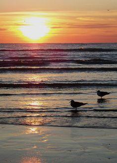 Surfside, TX @Mariah Osei-Boamah