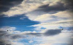 Linhas no céu. ------------------------------------ #photo #photos #pic #pics #picture #pictures #snapshot #art #beautiful #instagood #picoftheday #photooftheday #color #all_shots #exposure #composition #focus #capture #moment
