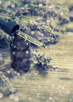 Perfumed herbal lavender oil essence by LiliGraphie on Creative Market