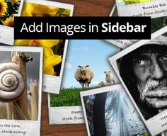 How to Add Images in Blogger Widget Sidebar ~ My Blogger Lab