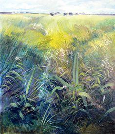 Fenland Fields 6 by Richard Sunderland