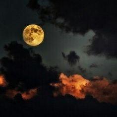 La luna llena presidía el cielo nocturno, proyectando lenguas de luz dorada sobre el prado