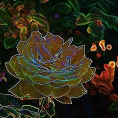 Yellow Neon Rose