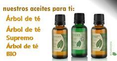 Aceite Esencial de Árbol de Té Productos #tesupremo #arboldete #tebio