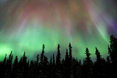 Aurora Borealis, Northern Lights - Alaska