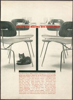 """1960 """"Celebrate your mealtimes with Herman Miller"""" in this case, DCMs! Furniture Ads, Furniture Design, Paper Design, Design Design, Charles & Ray Eames, Vintage Graphic Design, Famous Couples, Advertising Design, Vintage Advertisements"""