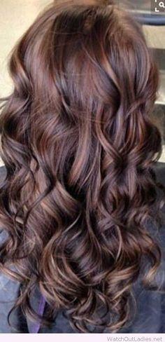 Very-Long-Chocolate-Brown-Hair-Color.jpg (500×1036)