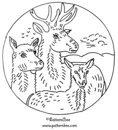 Wild animal embroidery patterns