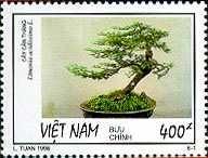 Bonsai on Postage Stamps, Vietnam