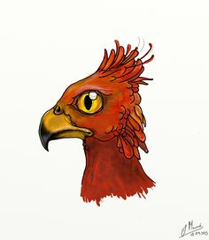 Graphic design drawing of a Phoenix