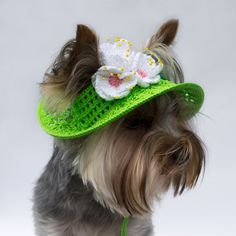 Sombreros de perro, perro gorros, sombreros para protegerse del sol perro, punto perro sombreros, sombreros de ganchillo para perros, sombreros de sol para perros