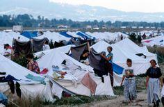 Réfugiés de la guerre en Bosnie (Tuzla, 14 juillet 1995)
