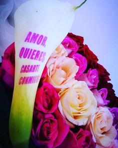 El mejor alcance es volverte  inolvidable y que mejor que ser parte de este momento! Flowers in love...#masquefloressomossentimientos #quelasfloresnopasendoda
