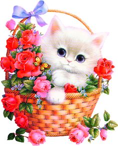 Hello pictures and quotes Hello Pictures, Cute Pictures, Cute Baby Animals, Animals And Pets, Kitten Images, Gato Gif, Glitter Graphics, Cute Cats And Kittens, Cat Drawing