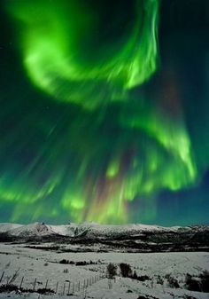 RT @B_Ubiquitous: #Aurora over #Norway      #travel #NorthernLights #art #nature #photography #space #weather #solar #storm https://t.co/TXpglXzVAR