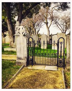 The first burial took place at in 1832 11 yr old Michael Carey of Dublin 8 Local History, Family History, Genealogy Search, Ancestry, Dublin, Fun Facts, How To Find Out, Irish, Places