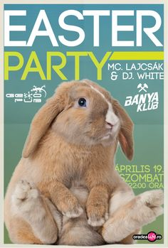 Húsvéti Party a Bányában. 2014.04.19 Dj, Rabbit, Animals, Bunny, Rabbits, Animales, Animaux, Bunnies, Animal
