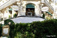 «La Closerie des Lilas» Boulevard Montparnasse - París - Francia