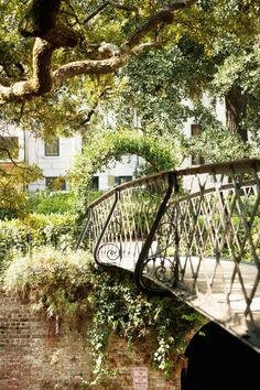 25 Reasons Why Savannah, GA is the Most Utterly Enchanting Place in the South  - CountryLiving.com