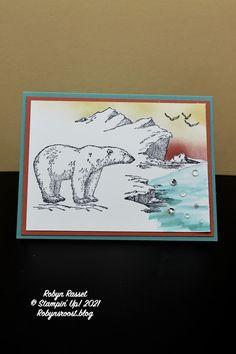 Como Zoo, Bear Photos, Christmas Catalogs, Stampin Up Christmas, Bird Cards, Animal Cards, Winter Cards, Winter Scenes, Stamping Up