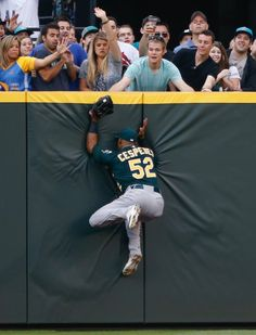 !SEATTLE, WA - MAY 11: Center fielder Yoenis Cespedes #52 of the Oakland Athletics crashes into the wall as he catches a deep fly ball by Kyle Seager of the Seattle Mariners in the sixth inning at Saf