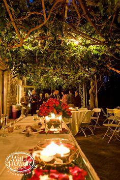 15 Best Lakewold Gardens Wedding Images Wedding Garden Boxwood